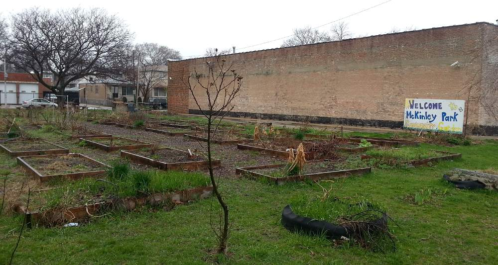 Gardeners planted for three years at the McKinley Park Community Garden, 1900 W. Pershing Road.