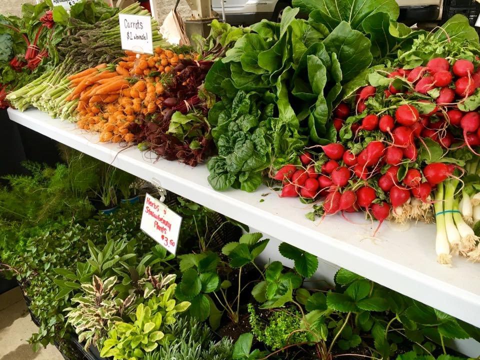 McKinley Park News - McKinley Park Farmers Market Kicks Off Sunday ...