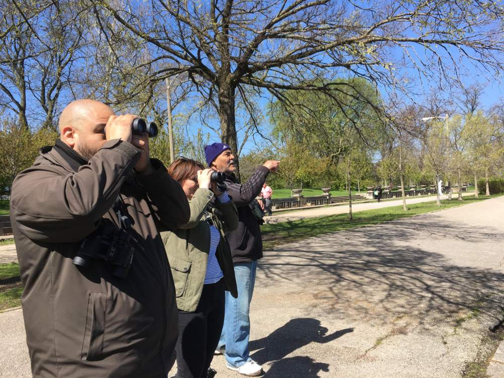 Antonio Flores, left, and fellow bird watchers spot waterfowl at the McKinley Park lagoon on the May 4, 2019, Bird Walk.