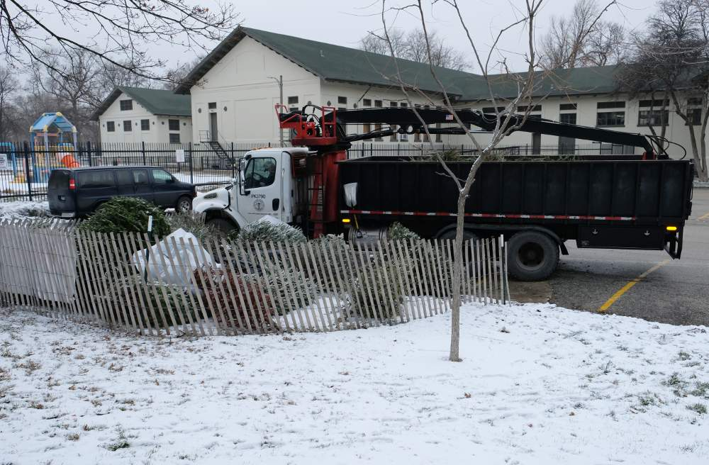 A Chicago Park District truck gets ready to pick up Christmas trees for recycling at the drop-off spot behind the McKinley Park field house.